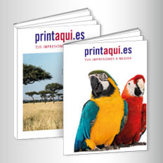 Revistas / Catalogos